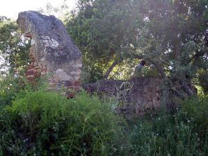 A ermida de S. Roque